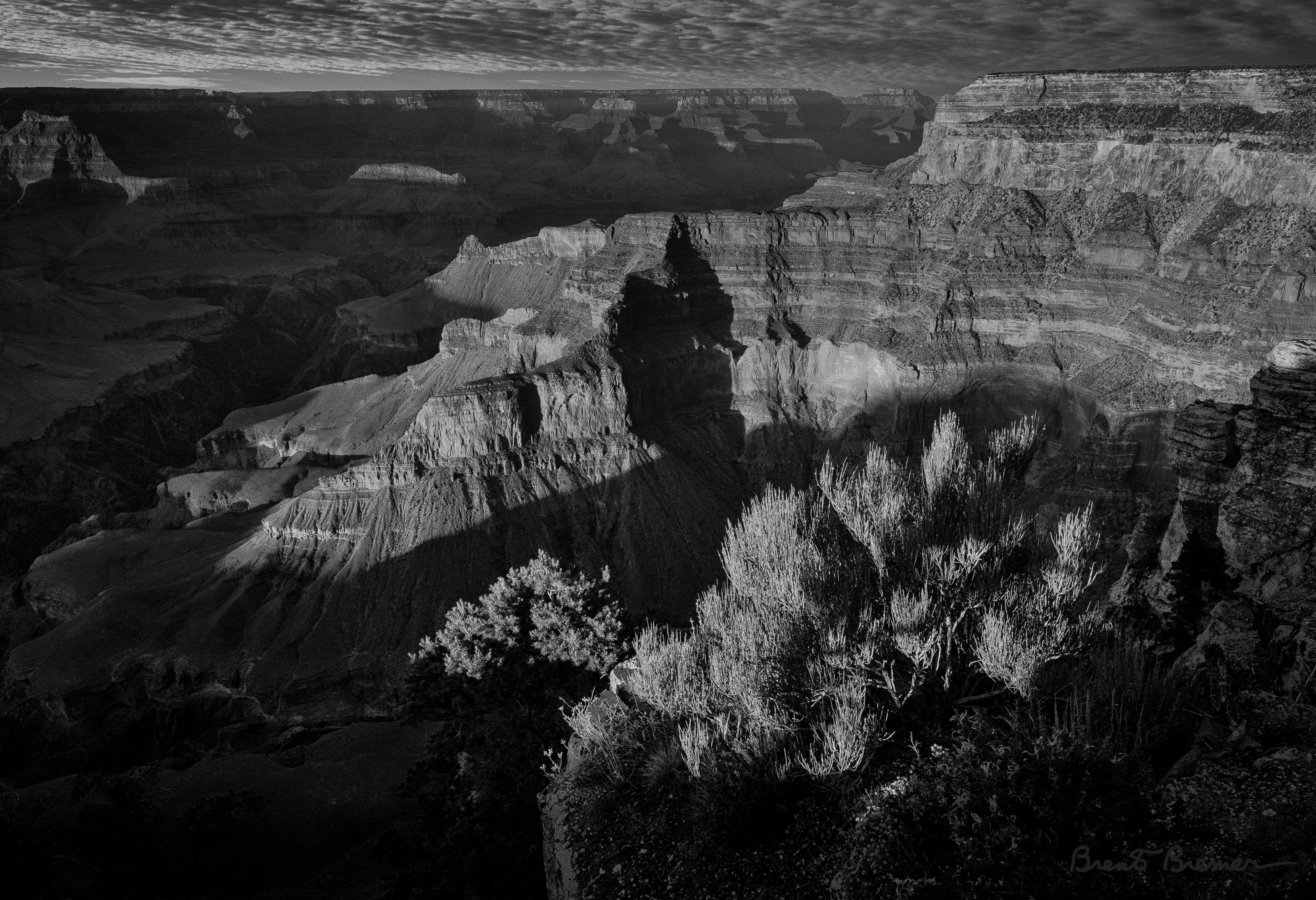 Grand Canyon - Brent Bremer