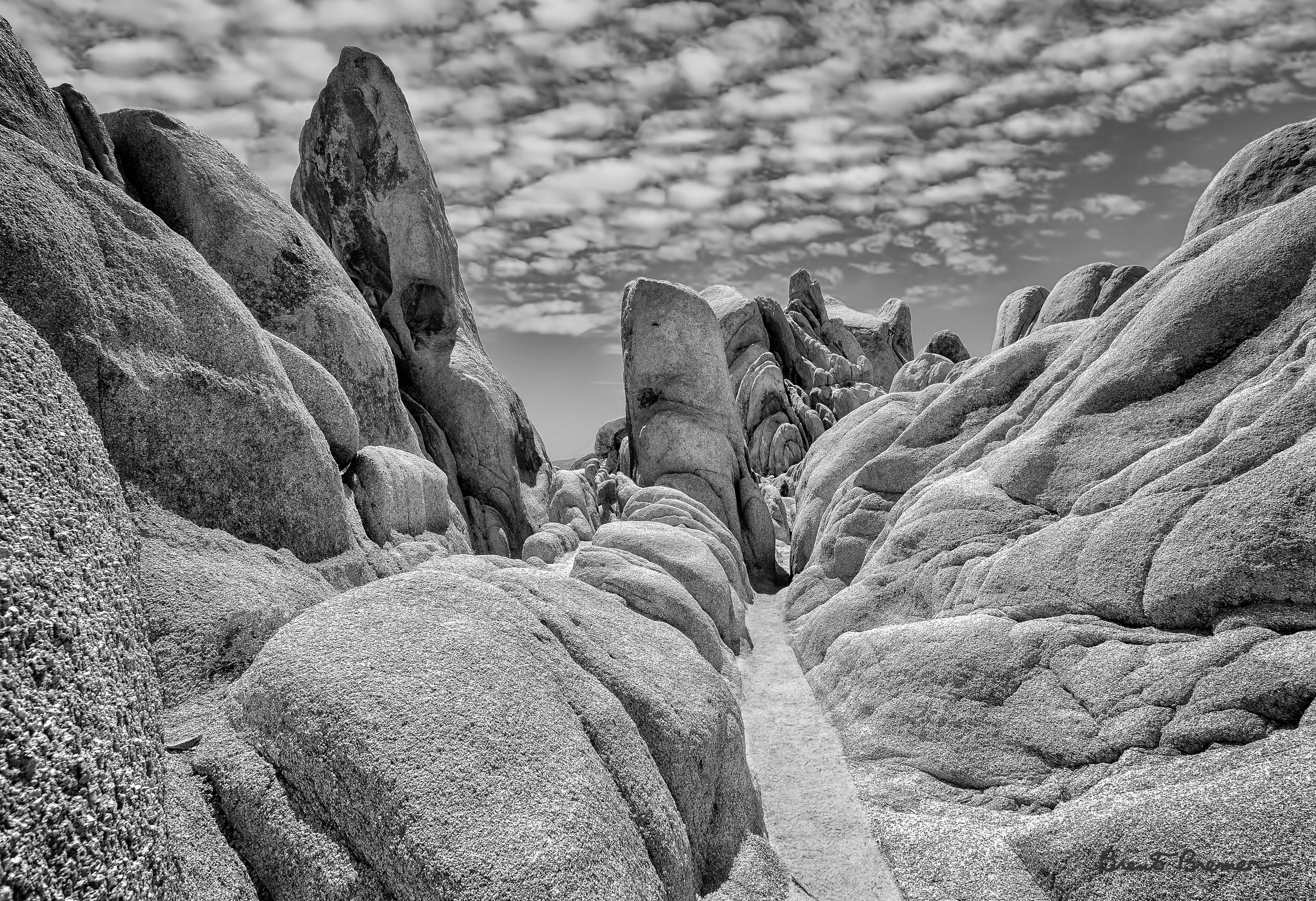 Joshua Tree Plutonic Passageway- Brent Bremer