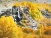 Fall Waterfall Art
