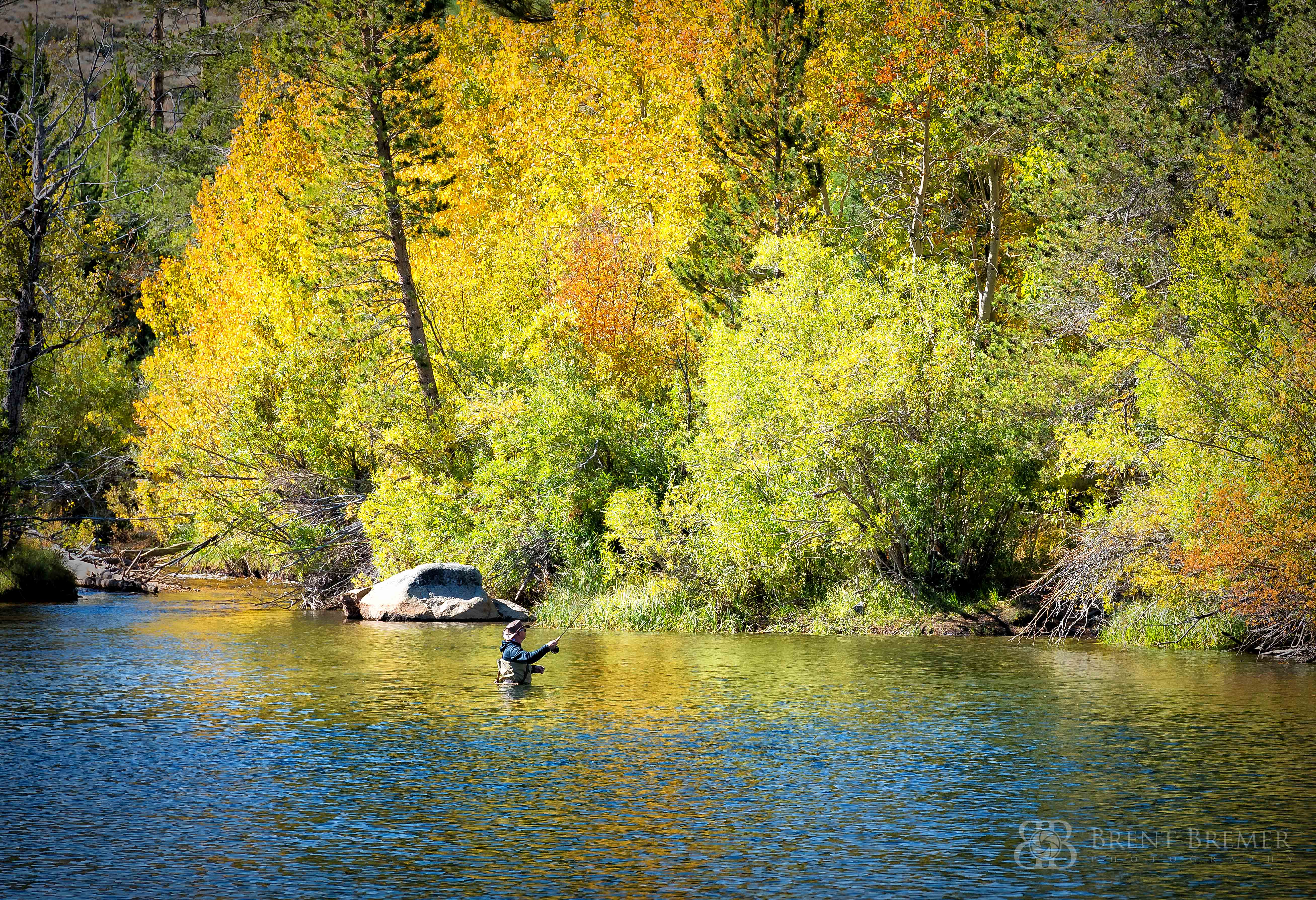 Eastern Sierra Fall Fisherman