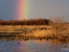 Piute Ponds Rainbow