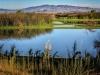 Piute Ponds