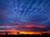 Desert Sunrise Extravaganza